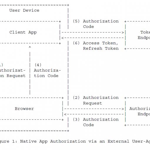 Рисунок 1 - Нативная авторизация приложения через внешнего агента пользователя
