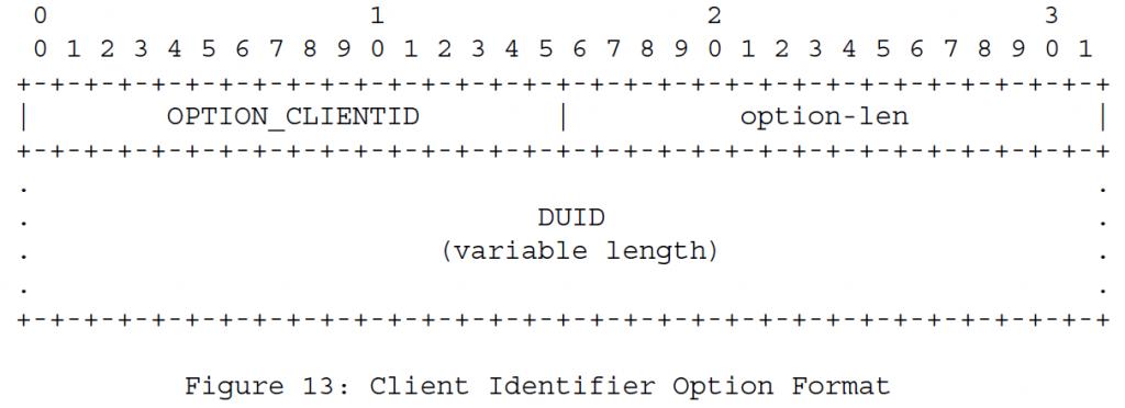 Рисунок 13 - Формат опций идентификатора клиента