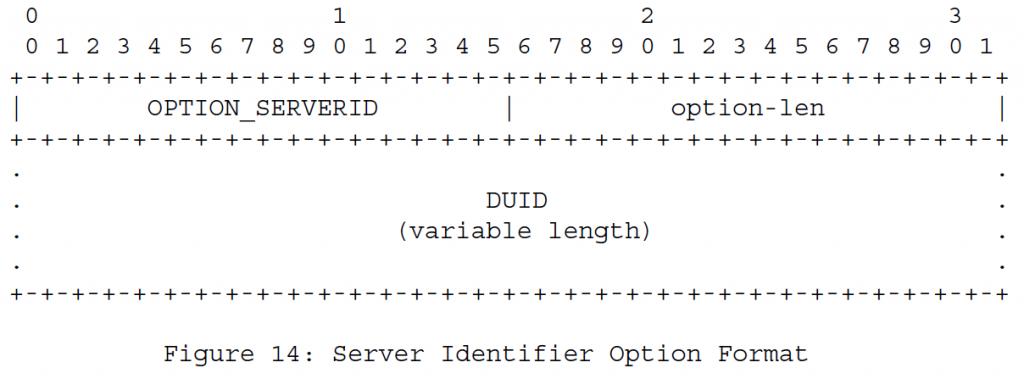 Рисунок 14 Формат варианта идентификатора сервера