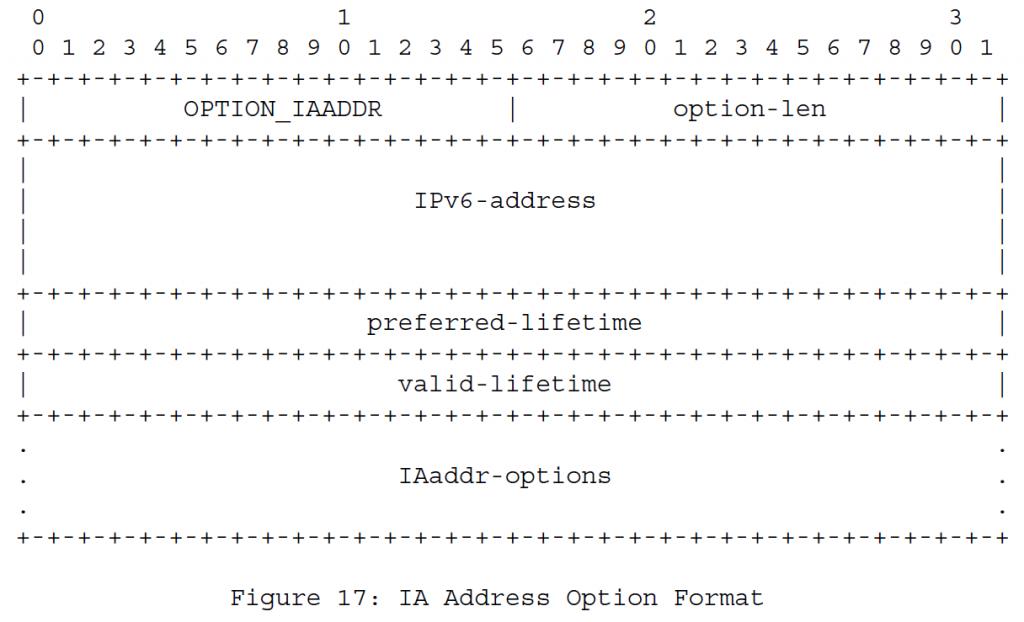 Рисунок 17 - Формат опций IA-адресов