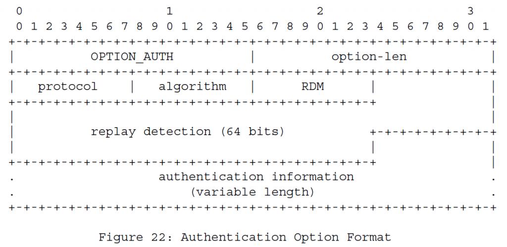 Рисунок 22 - Формат опций аутентификации