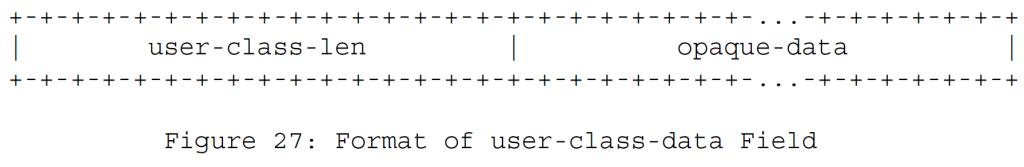 Рисунок 27 - Формат поля данных пользовательского класса