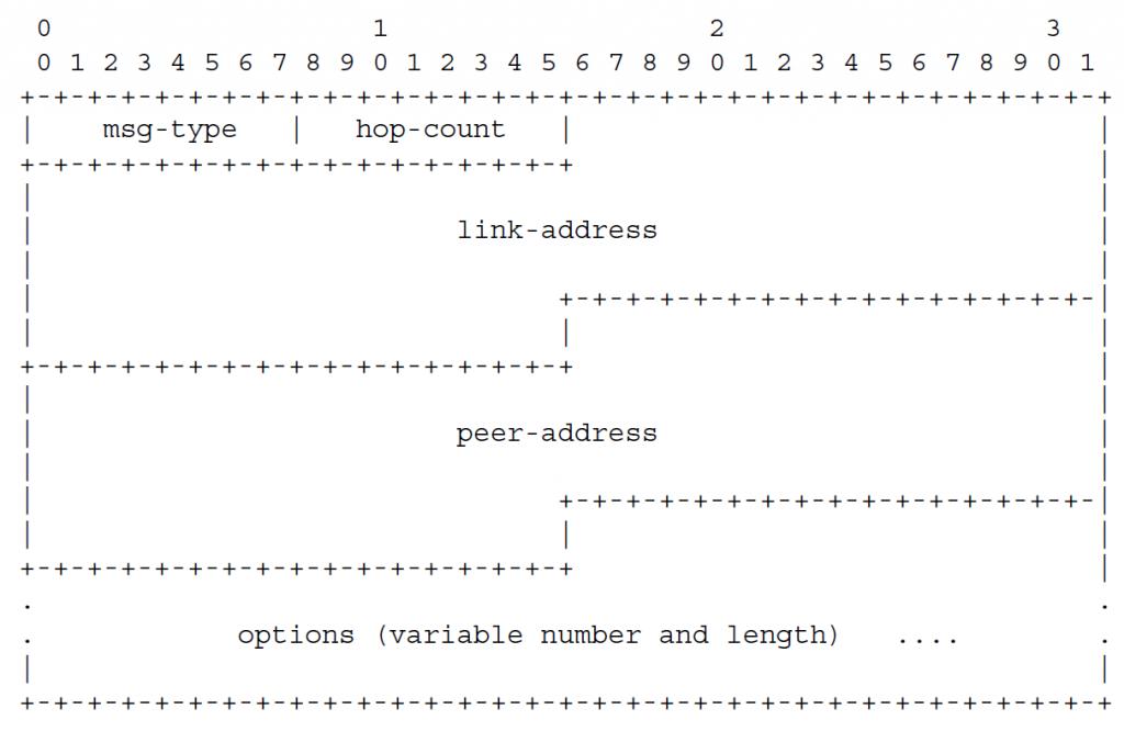 Рисунок 3 - Формат сообщения агента ретрансляции или сервера