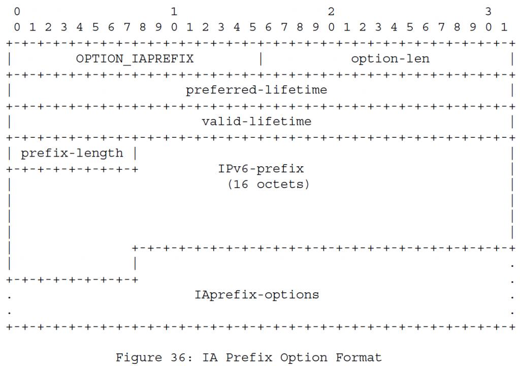 Рисунок 36 - Формат опций IA Prefix