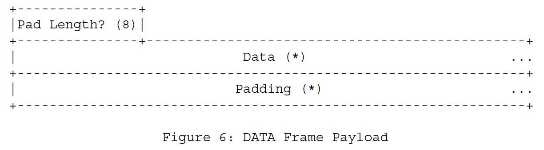 Рисунок 6 - Полезная нагрузка DATA Frame