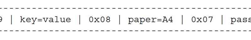 TXT-запись содержит три синтаксически допустимые строки ключ-значение