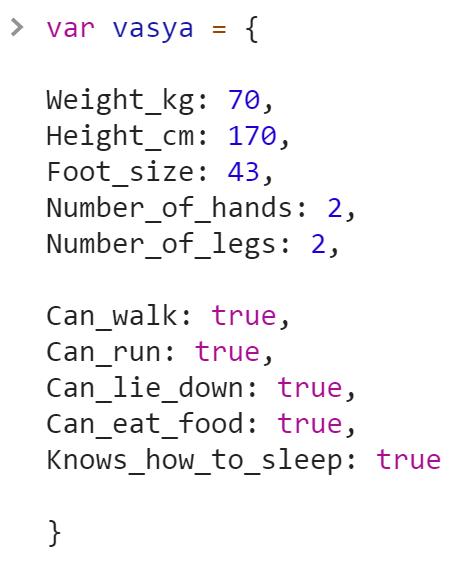 Объект Человека vasya - JavaScript