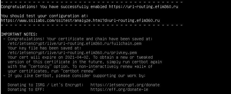 Успешное создание SSL-сертификата для домена
